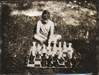 http://www.schroederworks.com/files/gimgs/th-15_Chess001.jpg